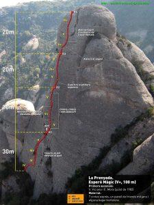Ressenya d'escalatroncs
