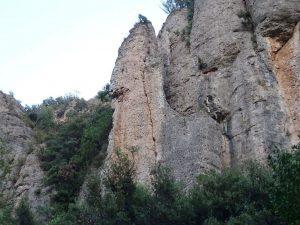 Agulla del Castell