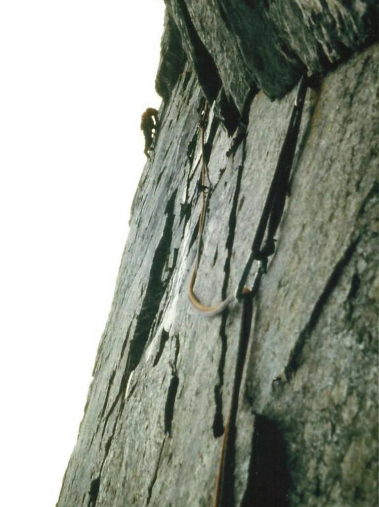 1981 (Noruega). Ruta anglesa al Troll Wall